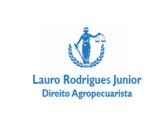 Lauro Rodrigues Junior
